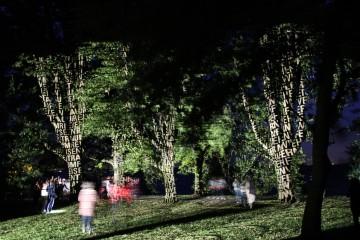 Lindauer Gartenkulturpfad