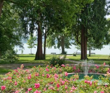 Park der Villa Rosenau in Konstanz