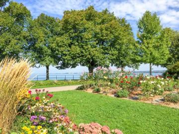 Hafen- und Stadtgärten in Bregenz