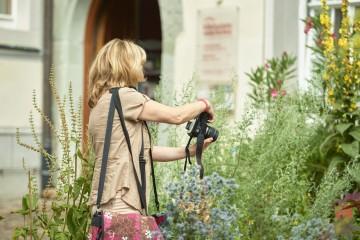 Kräutergarten Bibelgalerie Meersburg