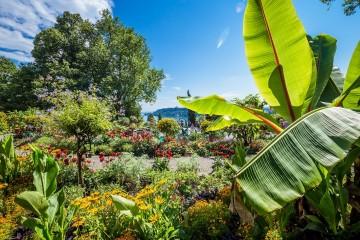 Gartenwunder Mainau