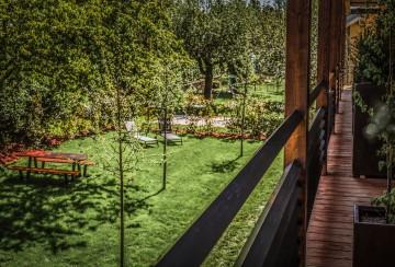 Blick auf den Apfelgarten