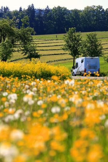 Mobil reisen inmitten herrlichster Natur