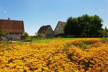 Dorfgeschichte(n) zum Anfassen