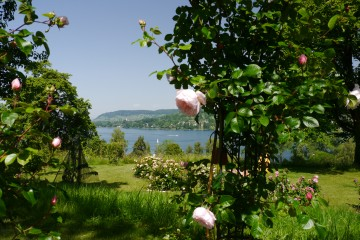 Seeblick im Privatgarten Kohler