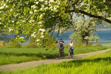 Radrouten zwischen Apfelbäumen und See