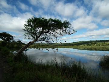 Der Greater National Park